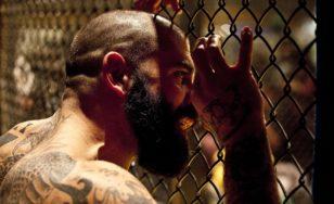 Bojový sport MMA
