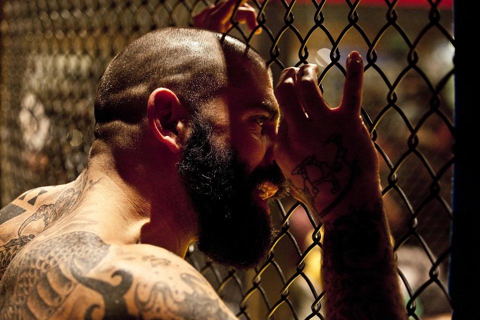 Bojový sport MMA a jeho stále rostoucí popularita