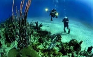 Potápění jako ten nejkrásnější sport