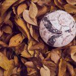 Jaké sporty je možné vykonávat během podzimu?